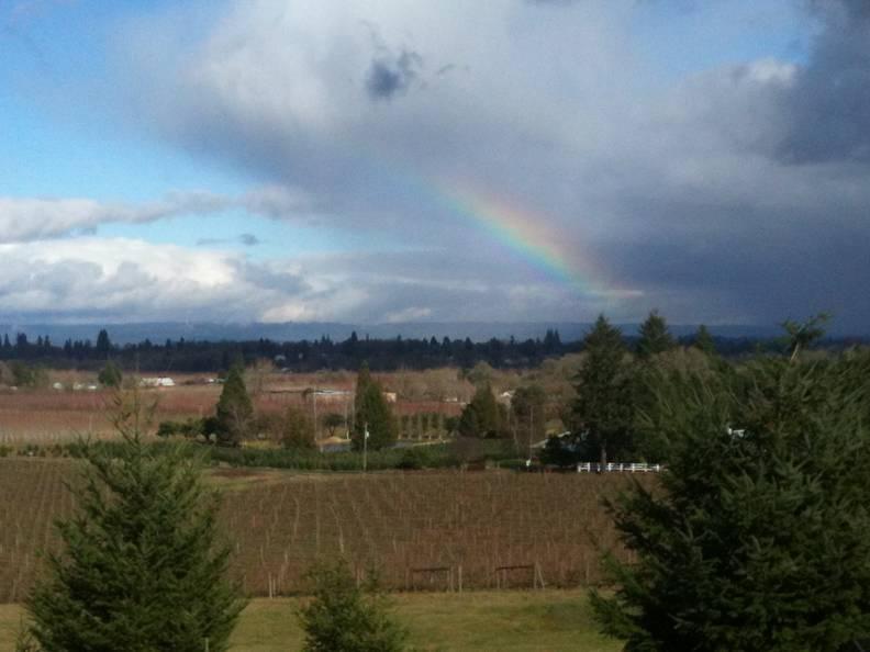 montinore-winery